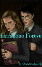 Harrmione Forever by Otakublondyneczka