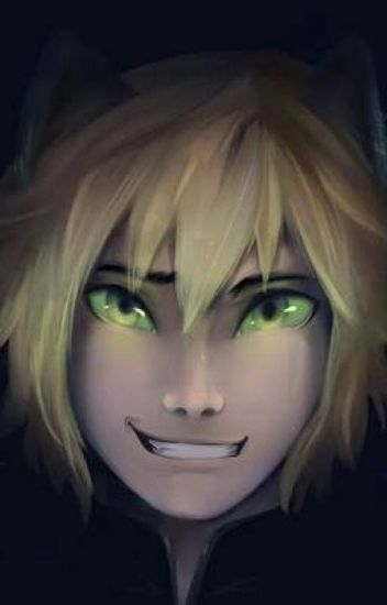 Adrien/Chat Noir X Reader One Shot (Female)