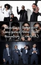 One shot. (boyxboy mindless behavior) by RomanIsLove