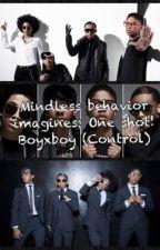 One shot. (boyxboy mindless behavior) by PrincessBrattt