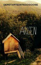 Arisen by daretartedstegogoose