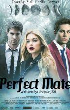 Perfect Mate by epav_201