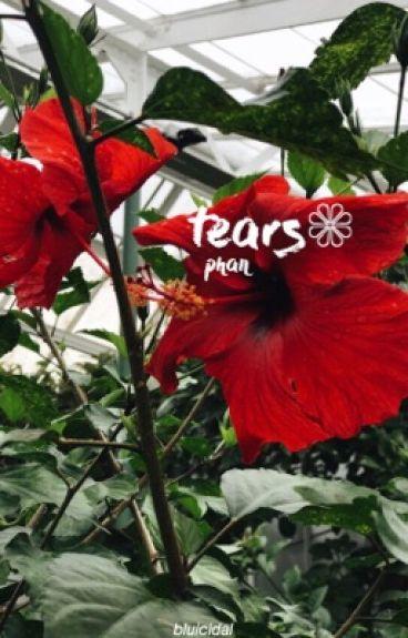 tears - phan AU❅