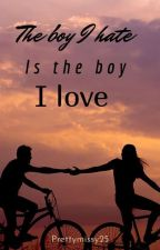 The boy I hate is the boy I love by prettymissy25