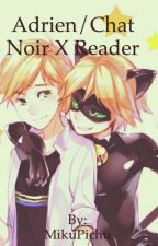 Chat Noir/Adrien Agreste x Reader One-shots Request open!!! by MikuPichu
