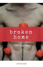 Broken Home.  Cake  by taysdreams