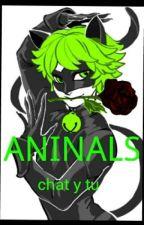 Animals Chat Noir Y Tu by AlexssaMarieMiranda