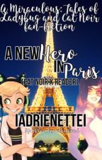 ❤ A NEW HERO IN PARIS ❤ ⋘Cat Noir/Adrien Agreste x Reader⋙ | ✔ by IAdrienetteI
