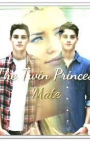 The Twin Princes' Mate by princessalphafemale
