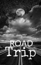 Roadtrip  by DiannaVFaye