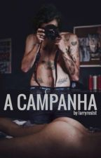 A campanha | L.S. by larryresist