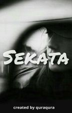 Sekata by quraqura