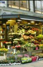 Çiçekçi by Normal47