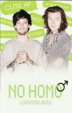 No Homo- Larry Stylinson- Hebrew by _lovelyharrie