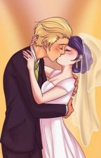Adrien and Marinette by akoana_