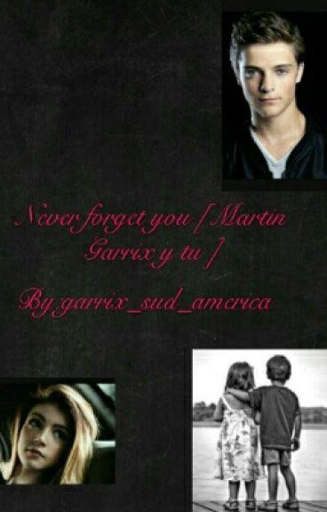 never forget you [ Martin Garrix y tu ]