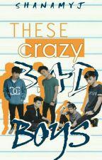 These Crazy Bad Boys by miyuki_angel