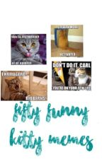 50 Funny Kitty Memes by righe_summerfield