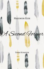 Maximum Ride : A Second Forever by SchaeferWafer