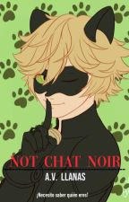 No, Chat Noir [Chat Noir y tú]  by AnaviLlanas