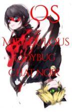 OS Miraculous Ladybug by Usuma-chan