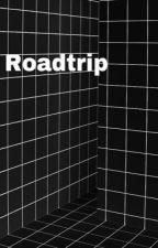 Roadtrip//Luke Hemmings EN PAUSE by tell-me-who-i-am