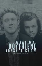What My Boyfriend Doesn't Know |N.S| by xxNikita1dxoxo