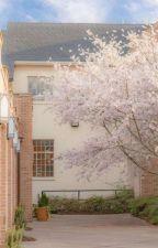 Mr. Arrogant [Book 2] ✿ Kim Taehyung (Bahasa) by Clouudyy