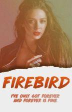 Firebird ➳ Derek Hale (Coming Soon) by CYBERBUCKY