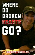 Where Do Broken Hearts Go? [wildnoss/vancat] by OneDirectionZillas