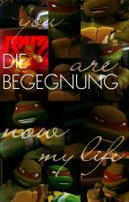 1. TMNT story Die Begegnung by MaxThompsen