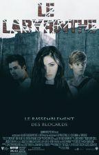 Le Labyrinthe : Le Rassemblement des Blocards (T4) [En Pause] by ShiraRaeken