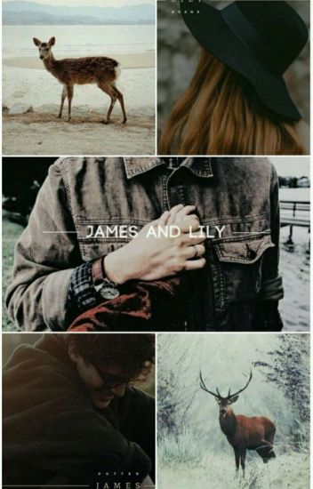 I'm in love with you, James Potter ♡ (ZAWIESZONE)