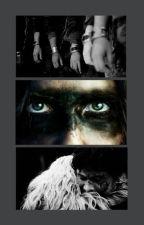 The 100 One Shots by UnderMySkin