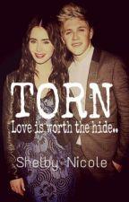 Torn (Niall Horan fan-fiction) by horanf00tball