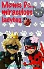 Memes De ... Miraculous Ladybug by Rakataka-kun