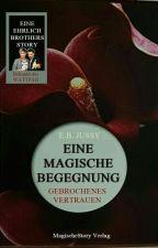 Eine magische Begegnung - Gebrochenes Vertrauen (Ehrlich Brothers Story) by MagischeStory