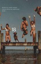 18 by rosegoldlaurent