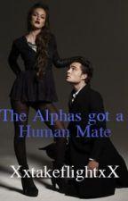 The Alphas got a Human Mate by XxtakeflightxX