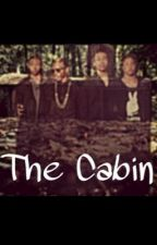 The Cabin| Mindless Behavior by BabyMsft10