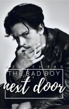 The Bad Boy Next Door by NEVAEH840