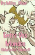 Entre Dos Mundos (Marichat Oneshot) by -Cyber_Girl-