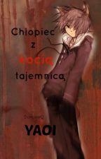 Chłopiec z kocią tajemnicą ~YAOI by DurusieQ