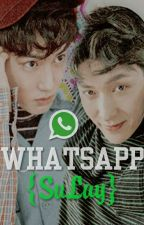Whatsapp {SuLay} by MinJeeWoon