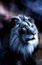 The lion boy bxb by loveboyxboy