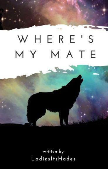 Where's My Mate?  [BOYxBOY]