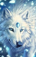 Elemental Wolf RP by sandflower1234