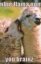 Larry the flesh-eating llama by poppy14s