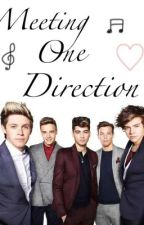 Meeting One Direction (A Niall Horan fanfic) by kara9212