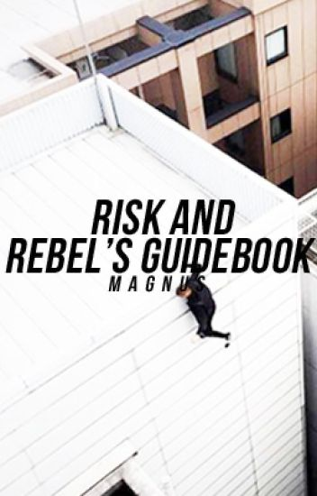 Risk and Rebel's Guide Book
